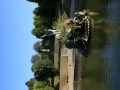 6-Jardin de Boboli 7 (4)